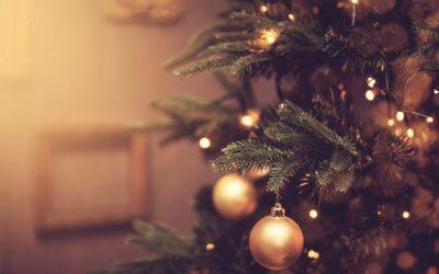 Kerstbrunchen op Landgoed Bleijenbeek