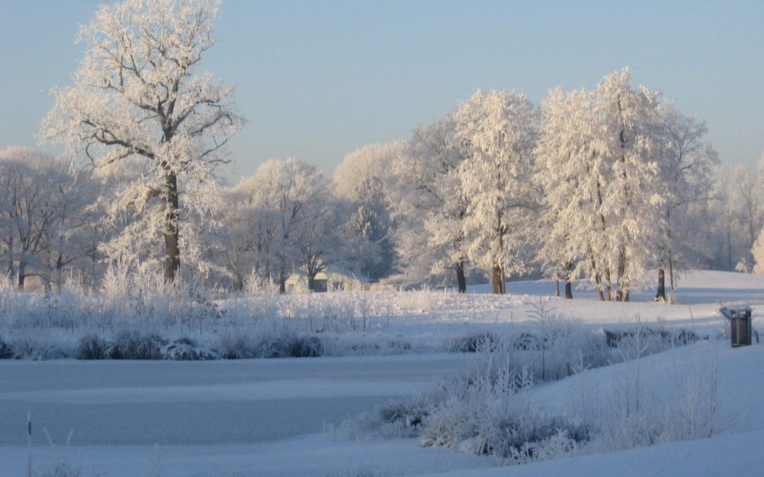 Wintervoordeel